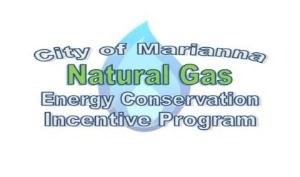 Natural Gas Incentive Program